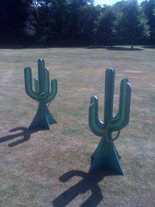 hire cactus hoopla