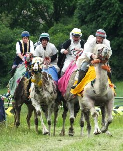 hire camel racing shows