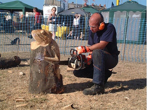 Hire chainsaw carving shows hire arena displays eventstar