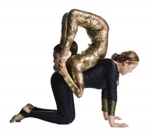 HIre Contortionists