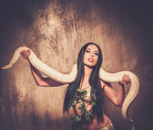 Hire snake charmers